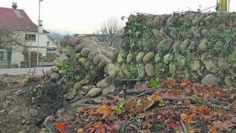 Die in den Fünfzigerjahren bei der «Burestube» (l.) restaurierte Römermauer ist beschädigt.