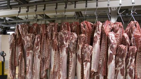 Metzgerei Bell will in Oensingen eine Schweinezerlegerei bauen. Doch noch stehen einige Hürden bevor.