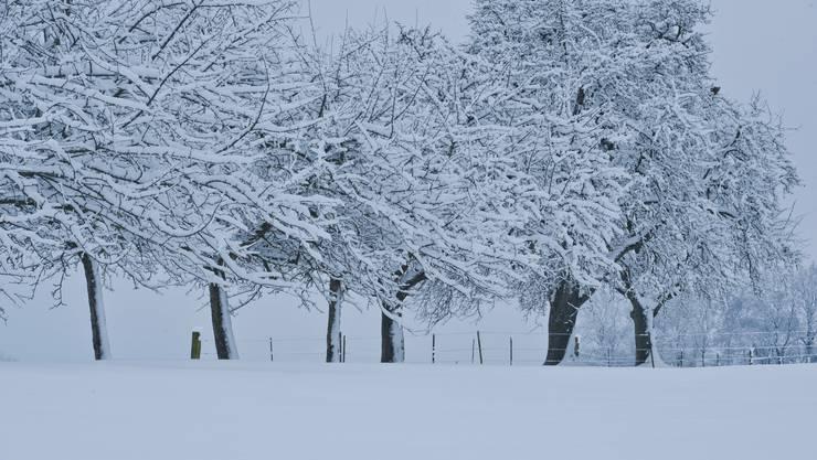 In den Bergen wird es in den nächsten Tagen Neuschnee geben, und auch im Flachland wird es kalt. (Archivbild)