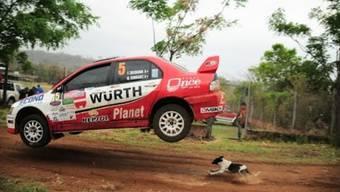 Rallye-Auto überfliegt Hund