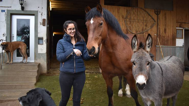 Stefanie Sutter führt gemeinsam mit ihrer Zwillingsschwester Janina den Tierlignadenhof in Kaisten. Auf dem Hof leben derzeit rund 120 Tiere, darunter Katzen, Hunde, Pferde, Esel, Gänse, Hühner, Ziegen, Schafe und ein Wildschwein.
