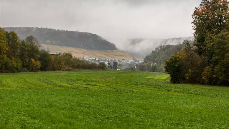 Zwischen Surb (versteckt durch Bäume) und der abfallenden Böschung war die Deponie Buchselhalde geplant.