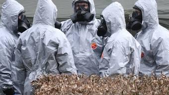 Entgiftungsaktion in einem Park im englischen Salisbury nach dem Nowitschok-Fund im März.