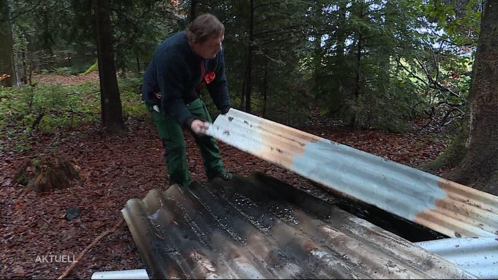 Hobby-Holzer ist stinksauer: Finderlohn für geklautes Holz in Bellach