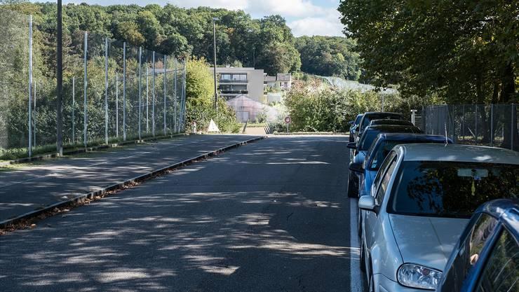 Seit rund 40 Jahren endet die Langmattstrasse abrupt im Nirgendwo. Der Kanton möchte sie zur regionalen Verbindungsstrasse ausbauen. Kenneth Nars
