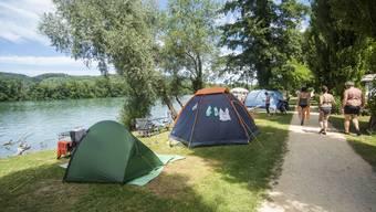 Auf dem direkt am Rhein gelegenen Campingplatz in Kaiseraugst ist zurzeit viel los.