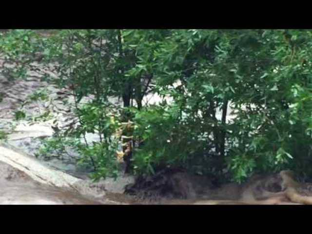 Reissend: Die Sturzflut durch den Tonto National Forest