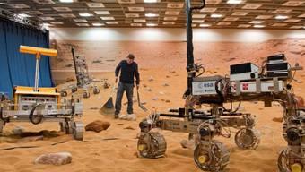 """Der Rover """"Bridget"""" kurvte am Freitag über zwei Stunden durch eine künstlich errichtete Mars-Landschaft."""