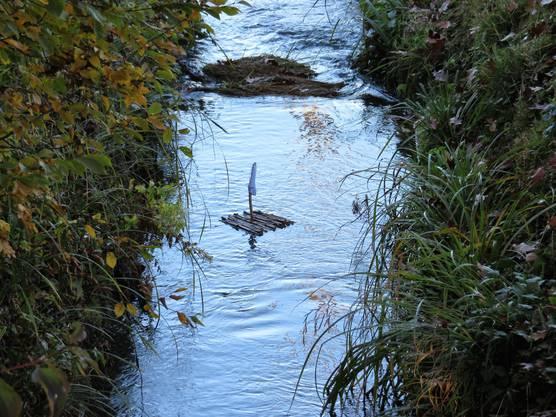 Der Biberenbach führt auch in langen Trockenperioden Wasser.