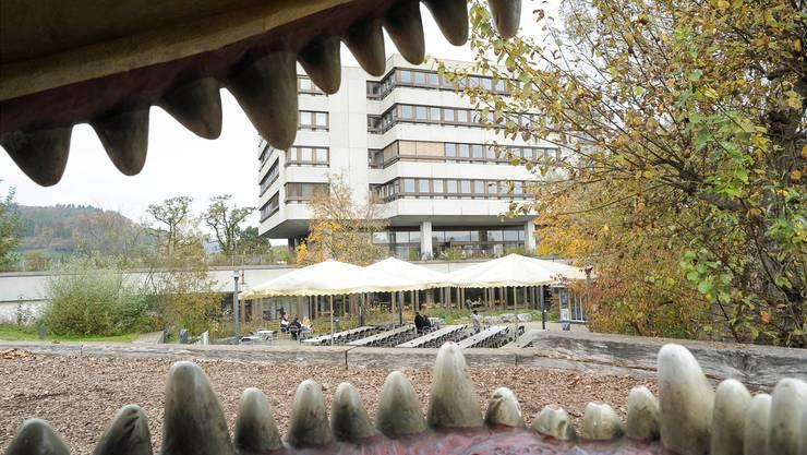 Der Kletterdrache auf dem Spielplatz der Psychiatrie Baselland.