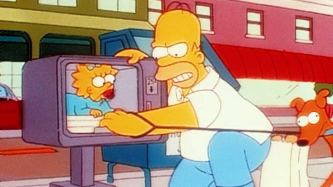 22 Kurzfilme über Springfield