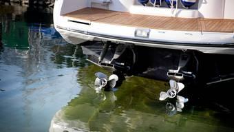 Werden Schiffe und Ausrüstung in verschiedenen Gewässern genutzt, können unbeabsichtigt fremde Arten eingeschleppt werden.