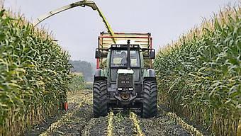 Die Waadtländer Kantonsregierung will den Einsatz des Unkrautvertilgungsmittels Glyphosat auf seinem Territorium reduzieren. Bis 2022 sollen alle staatlichen Wein-, Obst- und Agrar-Betriebe auf das umstrittene Herbizid verzichten. (Symbolbild)