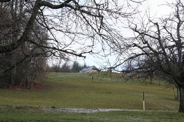 Das Gemeindehaus versteckt sich hinter Hügeln und Wäldern