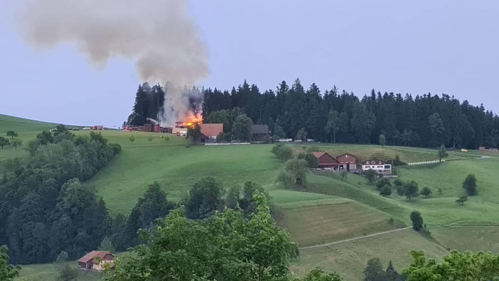 Brand zerstört Sägerei auf Steinhuserberg
