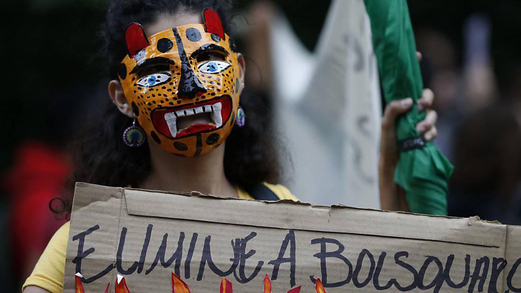 Auch vor der brasilianischen Botschaft in Mexiko fordern Demonstranten den Schutz der Amazonas-Regenwälder - und die Absetzung Bolsonaros.