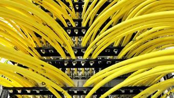 Bei der Revision des Datenschutzgesetzes sind sich National- und Ständerat nicht einig. (Symbolbild)