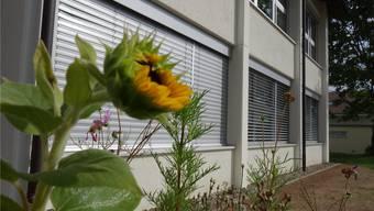 Ob die Dorfschule Benzenschwil wieder aufblüht, entscheidet sich, wenn die Pläne des Vereins Tagesschule in der Region und darüber hinaus ankommen. Eddy Schambron