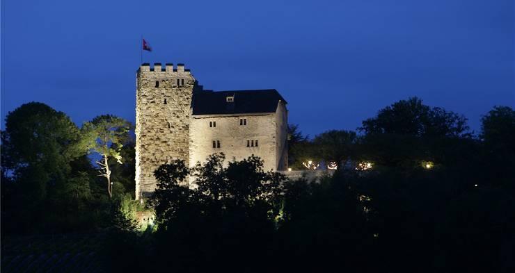 Heute wird Schloss Habsburg von 19 bis 1 Uhr beleuchtet – eine Reduktion um eine Stunde würde Fr. 51.80 pro Jahr einsparen. ala/az-Archiv