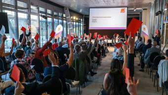 Die Partei bei der Abstimmung über den Ordnungsantrag.