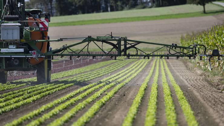 Die ständerätliche Wirtschaftskommission will verbindliche Regeln, um die Risiken durch den Einsatz von Pestiziden zu verringern.
