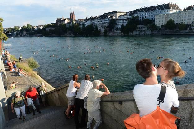 Gegen 5000 Schwimmer tummeln sich beim 36. Basler Rheinschwimmen im Basler Heimatgewässer