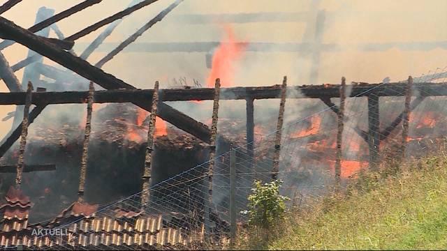 Nach Brand: Bauernfamilie steht vor dem Nichts
