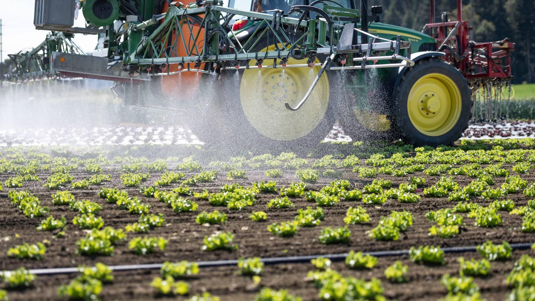 Die Zukunft der Schweizer Landwirtschaft – und dabei insbesondere der Einsatz von Pestiziden – spaltet die Politik. (Symbolbild)