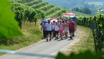Erste kulinarische Weinwanderung in Tegerfelden