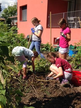 Klasse 4d im Garten