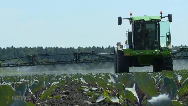 Schneider-Ammann will Bauern-Subventionen erhöhen