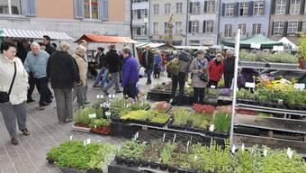 Solothurner Märet am Samstag - Bürger sollen laut Regierung vermehrt regionale Produkte kaufen.