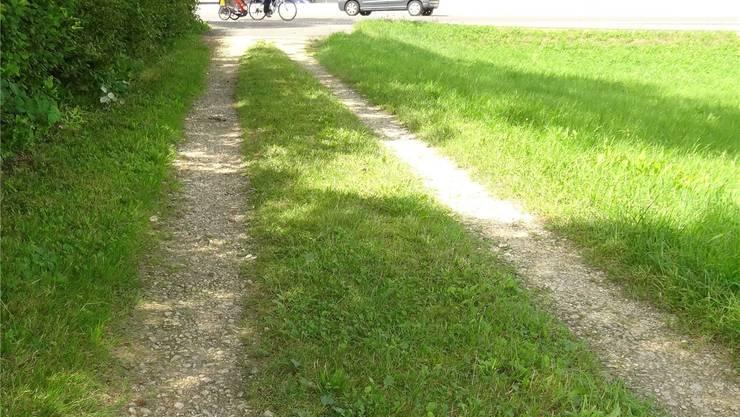 In diesem Weg (hinten die Saline) wird die Leitung verlegt. Fotos: chr