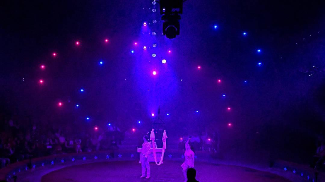 Die 32 Drohnen sind mit LED-Lichtern bestückt und lassen die Zuschauer bei ihrem Flug durchs dunkle Zirkuszelt staunen.