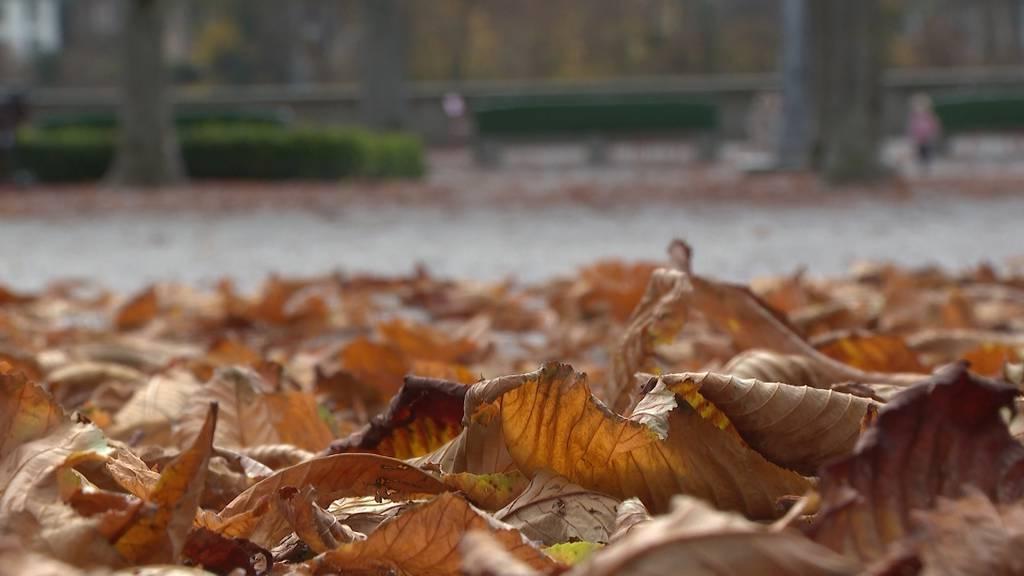 «Bärn treit – gemeinsam bis zuletzt»: Stadt Bern lanciert Charta für ein würdevolles Lebensende
