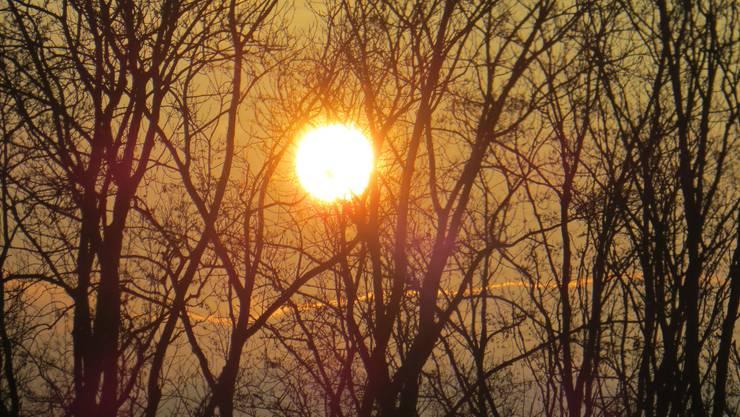 Sonnenaufgang am 4. Dezember 2019 in Frenkendorf (Richtung Liestal)