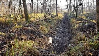 Die ehemalige Deponie Fröschegräbe ist im Kataster der belasteten Standorte eingetragen. Der Standort liegt teilweise in der Schutzzone der Trinkwasserfassung Schachen.