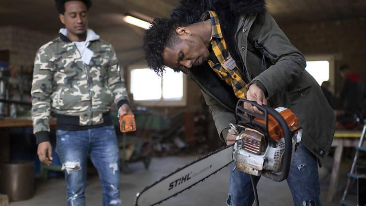 Weldu Emha aus Eritrea, links, und Kflemariam Mhretab, Teilnehmer eines Qualifizierungsprogramm für Flüchtlinge, demonstrieren in Wittenbach SG Werkzeugpflege. Seit Januar läuft ein Pilotprojekt, um Flüchtlingen eine Basis-Ausbildung in Landwirtschaft und Landschaftsunterhalt zu vermitteln.