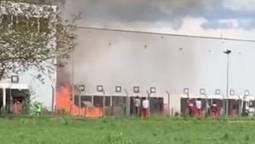 Bei der Firma FIEGE in Oftringen brannte am Mittwochnachmittag ein Stapel Holzpaletten. Die Feuerwehr konnte den Brand rasch unter Kontrolle bringen.