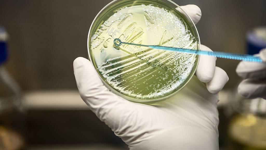 Betrifft auch die Schweiz: Die EU-Wissenschaftsminister diskutieren am Dienstag in Brüssel über die neuen Assoziierungsregeln für Drittstaaten an das EU-Forschungsprogramm Horizon Europe (2021-2027).