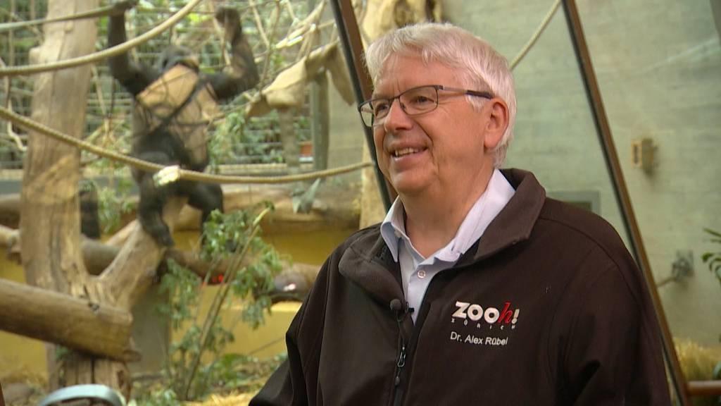 Abschiedstour durch den Zoo Zürich