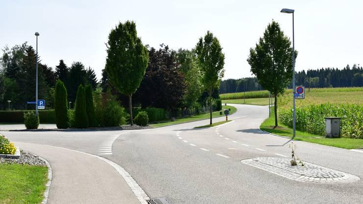 Die provisorische Bushaltestelle entsteht beim Knoten Wolfwilerstrasse-Babylonstrasse zwischen Grasstreifen und Insel sowie beim Stromkasten.
