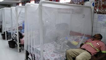 In Mittel- und Südamerika breitet sich derzeit - wie hier im Bild etwa in Honduras - das Dengue-Fieber rasch aus. (Archivbild)