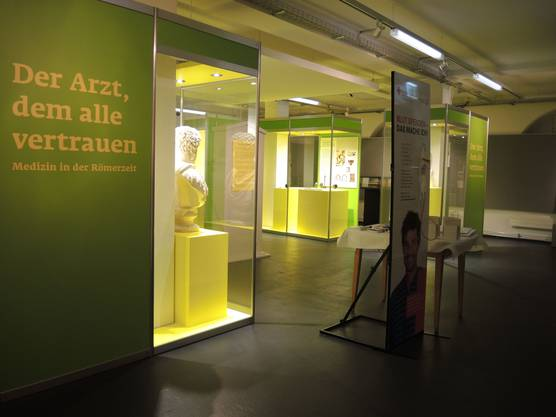 Grüne und gelbe Vitrinen machen die Ausstellung lebendig