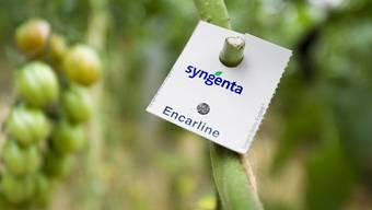 Der Basler Agrochemiekonzern Syngenta ist verhalten ins Geschäftsjahr 2017 gestartet. (Archiv)