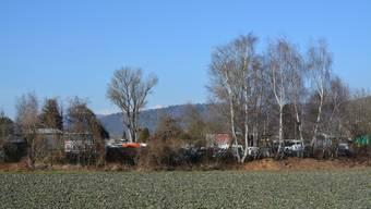 Das Niderfeld.