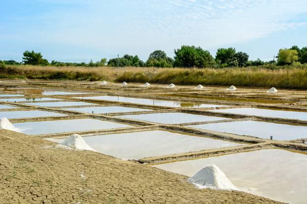 Zahllose Salzgärten.