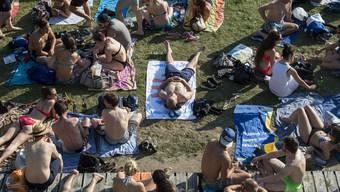 Knapp zwei Millionen Eintritte zählten die Zürcher Badis 2019.