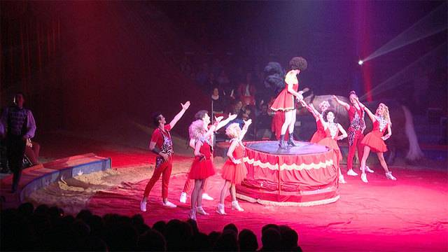 Moderner Zirkus Knie