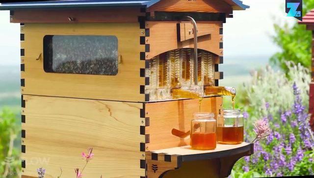 Schlaraffenland? Hier fliesst der Honig aus dem Hahn